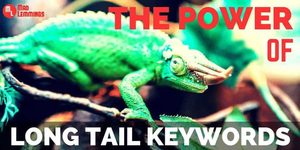 The Power of Long Tail Keywords