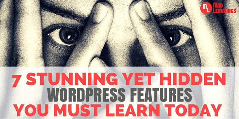Hidden WordPress Features That You Must Learn