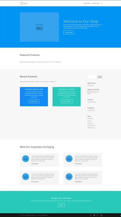 Divi Layout Home Shop