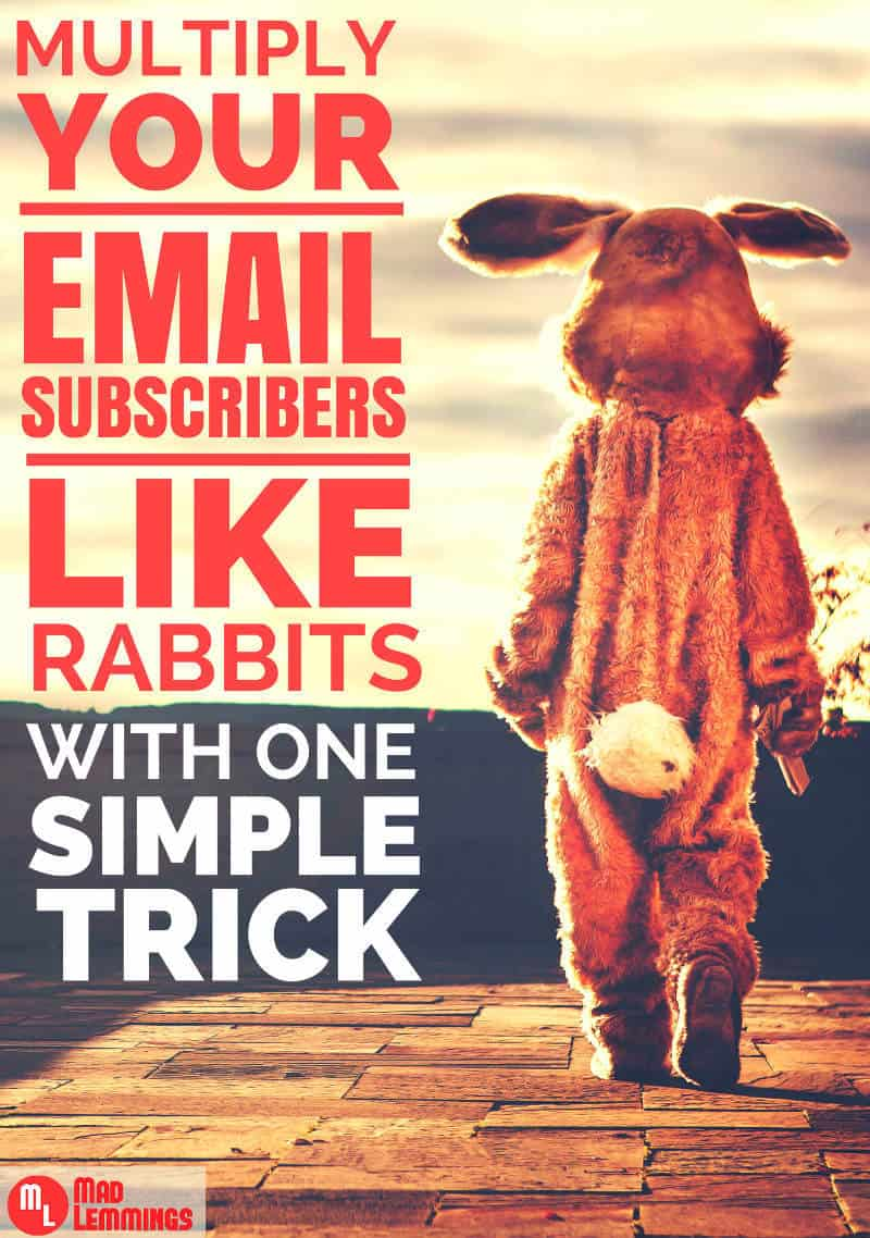 Multiply Your Email Subscibers with One Simple Change