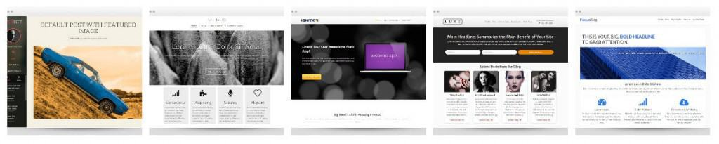 Thrive Themes Examples 2